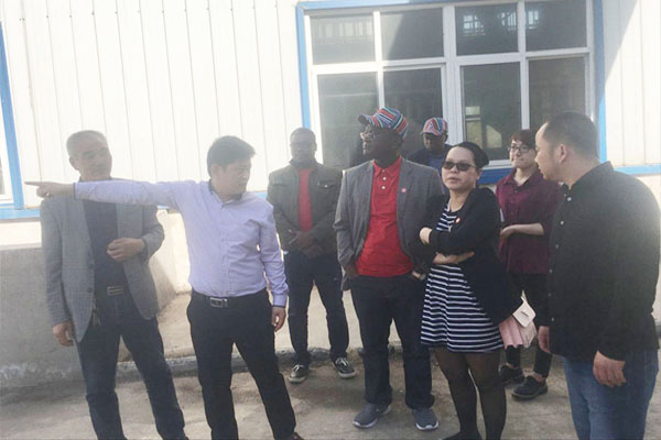 Nigeria clients visit Lingfine company and discuss a 50TPD soybean oil plant project